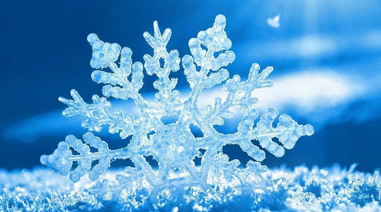 floc de neu